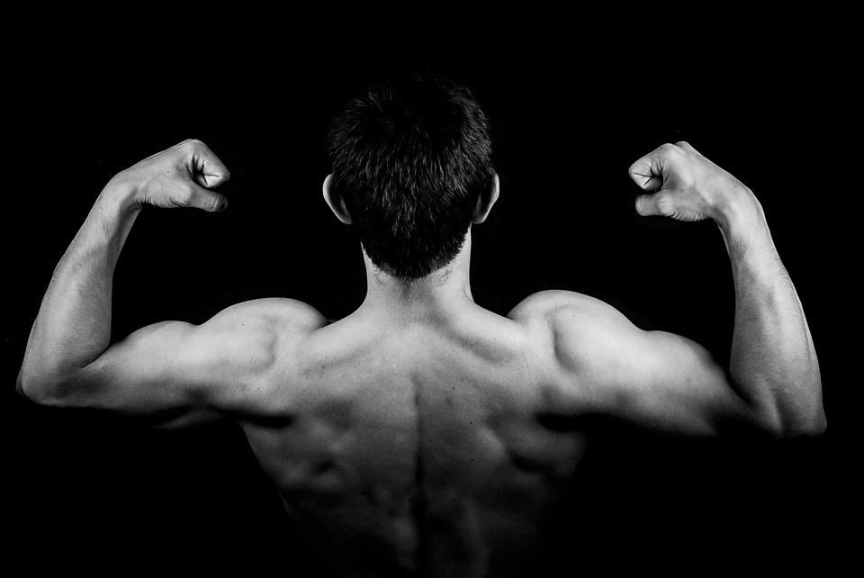 Eiwitrijke voeding: Alleen voor bodybuilders?